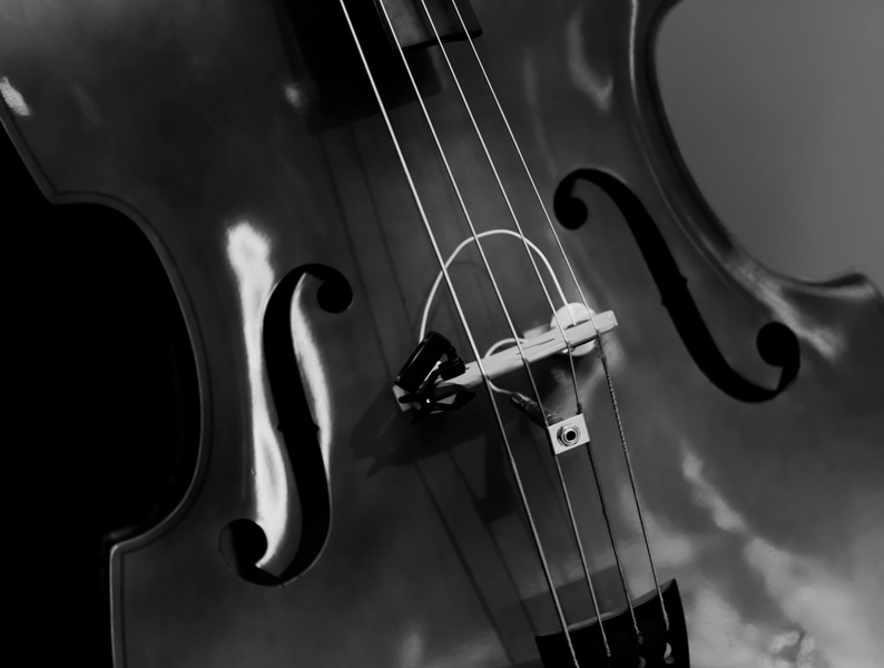 bass-1