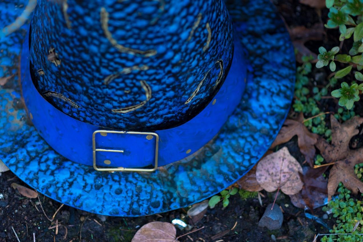 blue hat-1