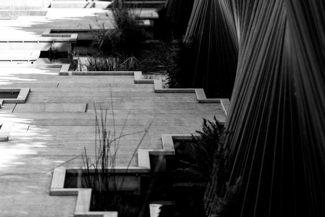 urban pond-1